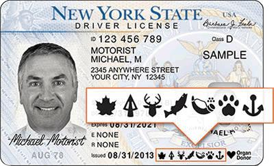 ny drivers license renewal status